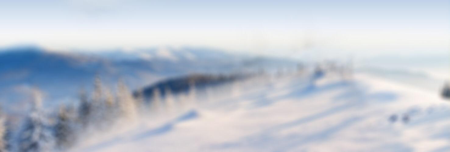 bgslide-winter-last1