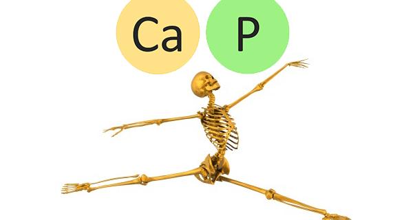 kaltsiy-i-fosfor-dlya-zdorovya-kostey