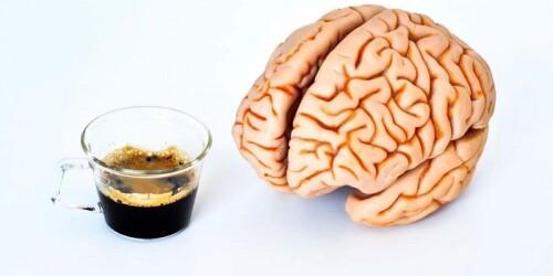kofe-i-mozg